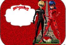 Miraculous party