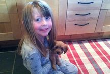 Cavapoo / I love my Ruby Toffee Tocknell