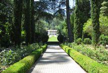 Inspiration-Gardens / gardens, manicured garden, topiary, formal garden, roses, romantic garden, secret garden, espalier