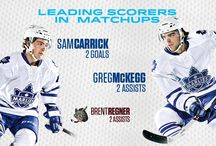 2014 Calder Cup Playoffs / by Toronto Marlies