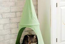 Camas para gatos / Camas para gatos: creadas con imaginación felina, hechas en casa o encontradas para el regocijo de nuestros dormilones amigos peludos