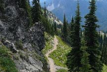 Pacific Crest Trail / The Pacific Crest Trail from the Mexican to Canadian borders along ridges and through deserts.