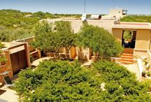 Formentera Villas / Unique villas to rent