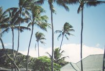 Let's go to Hawaii / by Lily'Anne Meyer