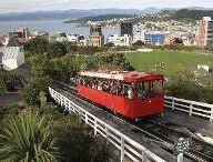 New Zealand - North Island / by Sydney Expert