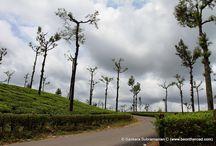 Tamil Nadu Travel Photos