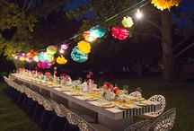 "Cinco de Mayo Fiesta / Why stop when you can ""party-party"". That what our Mexican fiesta party gives you. Perfect for Cinco de mayo, mexican fiesta, or a South of the Border party."