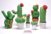 """Cactus y más ...."""""""