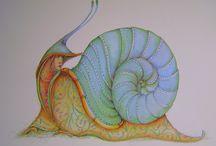 Art - Snails