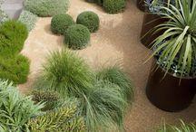 PK Gardens