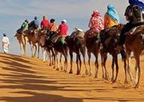 Morocco Camel Safari / Camel Safari provide Morocco Tours which lead you through a variety of activities such as archeological and historical exploration, camel trekking, hiking, swimming, sand boarding, windsurfing, star watching, bird watching and visiting with local Berber families.