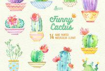 My Favorite Garden of Cactus.
