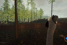 The Forest / The Forest è un videogioco di tipo survival horror free roaming. All'inizio il giocatore si ritroverà ad essere solo in un'isola piena di cannibali, con il figlio in mano a loro e con il resto dei passegeri dell'aereo. Il gioco è di tipo free roaming, non vi sono missioni di sorta, tutto sta nell'abilità del giocatore nel prendere decisioni per sopravvivere.