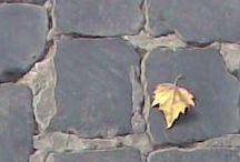 pezzi di Roma