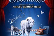 Circus Herman Renz 2012: SENSATIONS / Sensations is een betoverende show met een explosie aan overweldigende circusacts! Met waaghalzerij op het Rad des Doods, Arabische hengsten in volle galop, razendsnelle jonglage, verleidelijke luchtacrobatiek, een spectaculair roofdierennummer, komische clowns, adembenemende luchtacrobatiek op de hoge draad en veel meer! Nooit eerder waren in één show tegelijk zo veel bekroonde acts in of boven een circuspiste te bewonderen. Waaghalzerij voert de boventoon!
