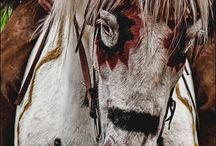 Horses, barns&tack! :) / by Cassidy Gray +