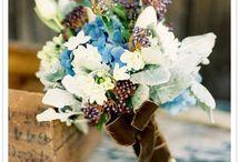 Wedding Ideas / by Meaghan Williams