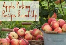 I Went Apple Picking... Now What?