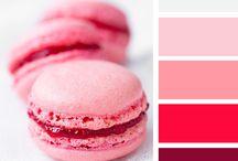 Color Palette Food