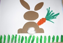 projecte conill