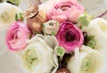 Range of Arrangements / Flowers that make us swoon!