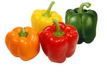 Tanaman buah dan sayur