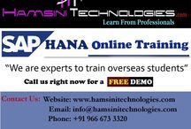 SAP HANA Trraining / Hamsini Technologies is one of the largest groups of IT training institutes in Hyderabad, India. We have mainly 13+ years experienced professionals to train you. Our trainers are very experts to take all latest technologies Online, Classroom & Corporate Trainings. We are providing SAP HANA Online Training with good course materials and 2 months unlimited server access and complete job support. Contact us anytime for 24*7 support. Email: info@hamsinitechnologies.com, Phone: +91 9666733320.