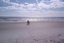 Activities and Events / Things to do and upcoming events on and around Hilton Head Island, South Carolina