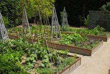 garden - fruit and vegetables / zeleninka ovocinka