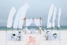"A ""Princess"" Beach Wedding Package / Big Day Weddings, Beach Weddings, Princess Wedding Package, Wedding Packages, Alabama Beach Weddings, Gulf Coast Weddings, Orange Beach Alabama, Gulf Shores Alabama"