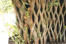 GARDEN – Secrets of Willows