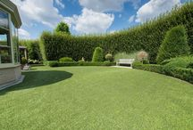 No-Lawn Garden Ideas / Tired of constant lawn maintenance? I am! Here's some no-lawn garden ideas. / by Geoffrey Wakeling