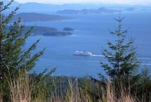 Seaside destinations...pleasures. / Idling at sea...seeking anchorages...enjoying the Gulf Islands scenery...sometimes, taking the floatplane to the city, the Islands spreading below, into their beautiful whole...summer swimming off a sailboat (the best!).