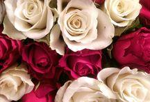 # Love