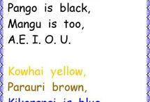 Maori in the classroom