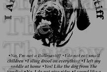 English Mastiffs!!