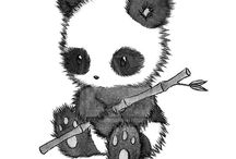 petit panda