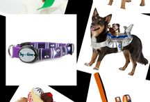 PetSmart #PetSmartFashion / This board is full of all of the fun things you can buy for your pet at PetSmart and PetSmart.com. From Halloween Costumes for your dog to Ugly Christmas Sweaters for your cat to a dress for your ferret PetSmart has your pet covered. #PetSmartFashion