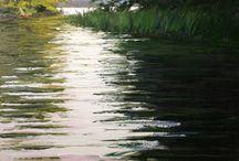 Waterlandschappen
