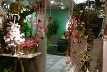 Flowers and Wheels  Floral Conceptstore / Flowers and Wheels is een creatief bedrijf in groen, bloem en decoratie.