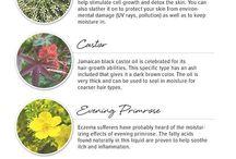 Skin care / Cilt Bakımı
