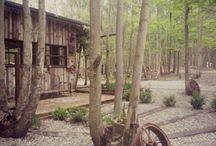casita en el bosque Ramallo / se alquila casita en el bosque en ramallo provincia de Buenos aires Argentina. A sólo 100 mts del río para.reservas al 005493329309464 valeriagiglio80@hotmail.com