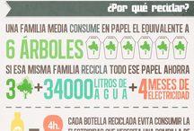 Infografía  del reciclaje