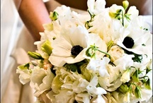 Southern Blooms Bouquets / by Southern Blooms/ Pat's Floral Designs