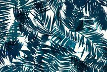 Papiers peints / Patterns