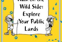 For The Classroom: My Public Lands / America's public lands belong to the people who enjoy the great outdoors, but they are also home to over 3,000 species of fish and wildlife, as well as a diversity of plant species.  Historic and archaeological sites, as well as scenic wonders, abound.  Use these resources to learn about some of the many natural and cultural resources that can be found on public lands and how you can enjoy them.   / by Bureau of Land Management