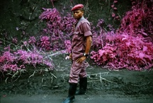RICHARD MOSSE: INFRA / 30 MAR - 10 JUNE 2012 @OpenEyeGallery - Richard Mosse's Infra project uses obsolete military surveillance technology, a type of infrared colour film called Kodak Aerochrome, to investigate ongoing conflict in the Democratic Republic of Congo.