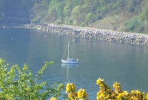 Torquay / sailing boat in Babbacombe Bay one morning early