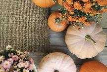 aes: autumn