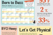 Bee, honey, beekeeping